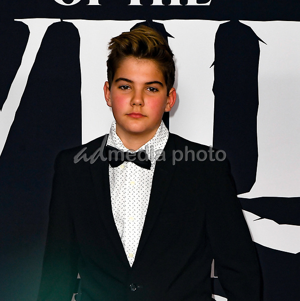 "13 February 2020 - Hollywood, California - Declan Chambers. ""The Call of the Wild"" Twentieth Century Studios World Premiere held at El Capitan Theater. Photo Credit: Dave Safley/AdMedia"