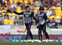 Mitchell Santner and Tim Seifert. Twenty20 International cricket match between NZ Black Caps and England at Westpac Stadium in Wellington, New Zealand on Sunday, 3 November 2019. Photo: Dave Lintott / lintottphoto.co.nz