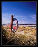 Budle Bay, Northumberland