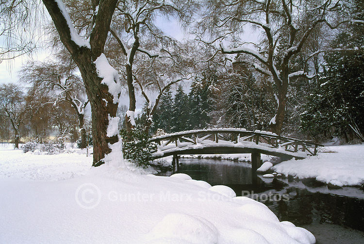 Stanley Park, Vancouver, BC, British Columbia, Canada - Snow Covered Landscape, Bridge over Creek, Winter