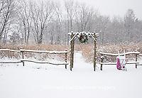 63821-174.04 Rustic fence & arbor with holiday wreath & purple wheelbarrow near prairie in winter, Marion Co. IL