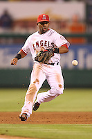 08/16/11 Anaheim, CA: Los Angeles Angels third baseman Alberto Callaspo #6 during an MLB game played between the Texas Rangers and the Los Angeles Angels at Angel Stadium. The Rangers defeated the Angels 7-3.