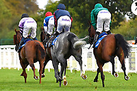Horses go down the course prior to The Meachers Global Classic Supporting Gift Of Sight Handicap during Evening Racing at Salisbury Racecourse on 3rd September 2019