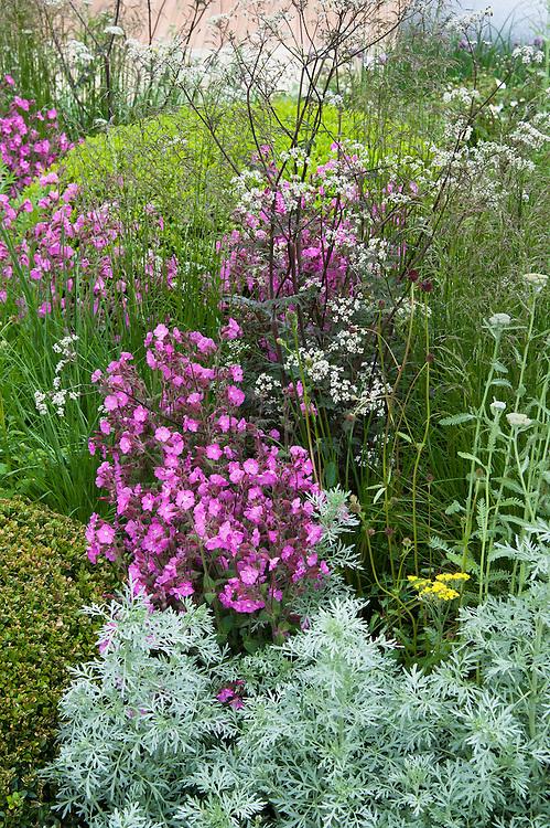 The Brewin Dolphin Garden, designed by Robert Myers, Gold medal winner, RHS Chelsea Flower Show 2013.
