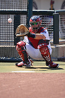 Cedar Rapids Kernels catcher Bryant Hayman (33) warms up the pitcher in the bullpen prior to the game against the Clinton LumberKings at Veterans Memorial Stadium on April 17, 2016 in Cedar Rapids, Iowa.  Clinton won 7-2.  (Dennis Hubbard/Four Seam Images)