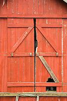 closeup of red barn door