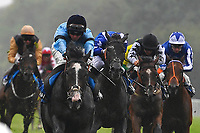 Winner of The British EBF Molson Coors Novice Stakes Div 1, Ascension ridden by Jack Mitchell and trained by Roger Varian during Horse Racing at Salisbury Racecourse on 14th August 2019