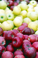 FRUITS-VEGETABLES: Fresh Apples