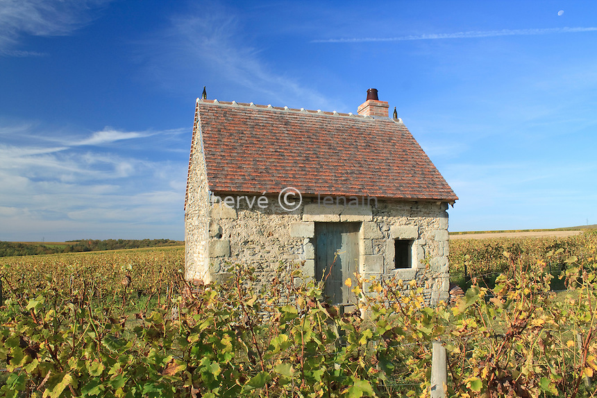 France, Cher (18), région du sancerrois, Sancerre, cabane de vigne (domaine de la Moussière) dans le vignoble en automne France, Cher, Sancerre region, Sancerre, Sancerre vineyards in autumn, shed vine (field la Moussière)