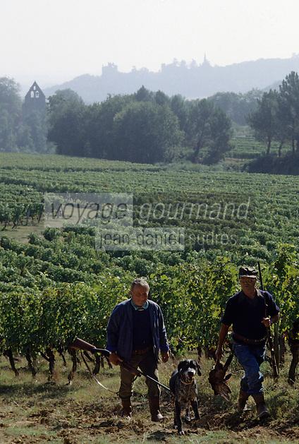 Europe/France/Aquitaine/47/Lot-et-Garonne/Buzet : Chasseurs dans les vignes (Côtes de Buzet)
