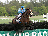 6th F/M Maiden Hurdle - Quiet Flaine