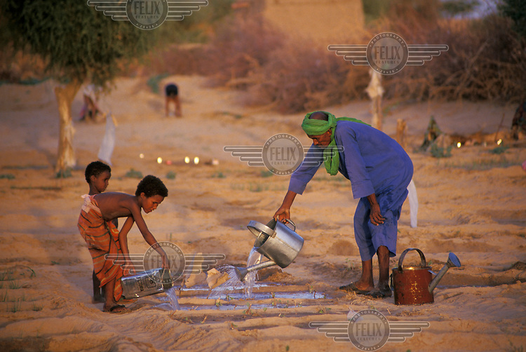 Fulani family watering seedlings in a reforestation project.