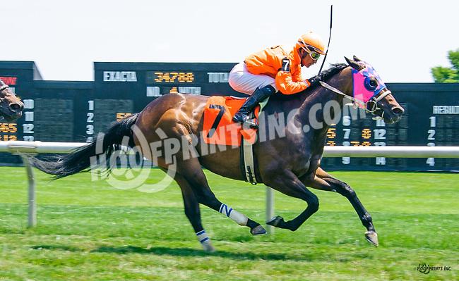 Uncle Leo winning at Delaware Park on 6/15/17