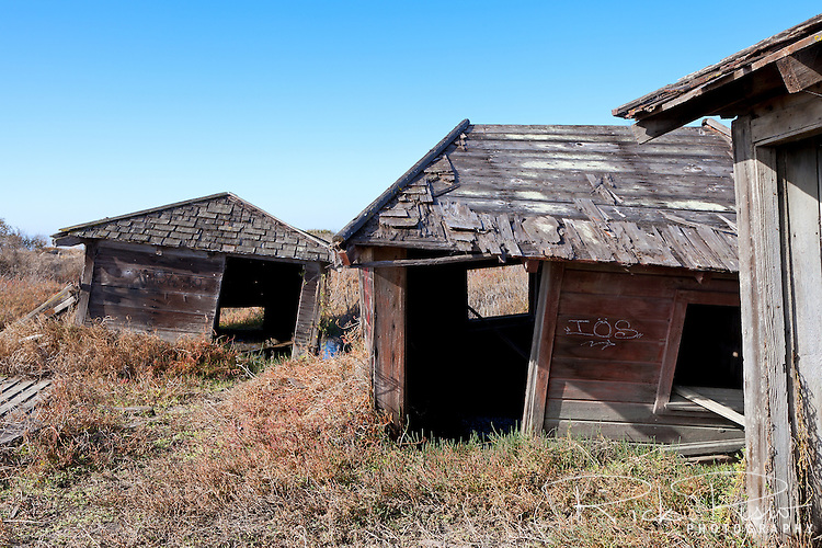 Abandoned shacks slowly sink into the marsh at the ghost town of Drawbridge in southern San Francisco Bay. Drawbridge was a hunting village started in the 1880's with the last resident leaving in the 1970's.