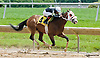 Greentree Road winning at Delaware Park on 6/13/13