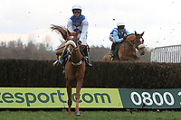 Race winner Savant Bleu ridden by Nick Scholfield in jumping action during the Betfair Don't Settle for Less Beginners Chase - Horse Racing at Fakenham Racecourse, Norfolk
