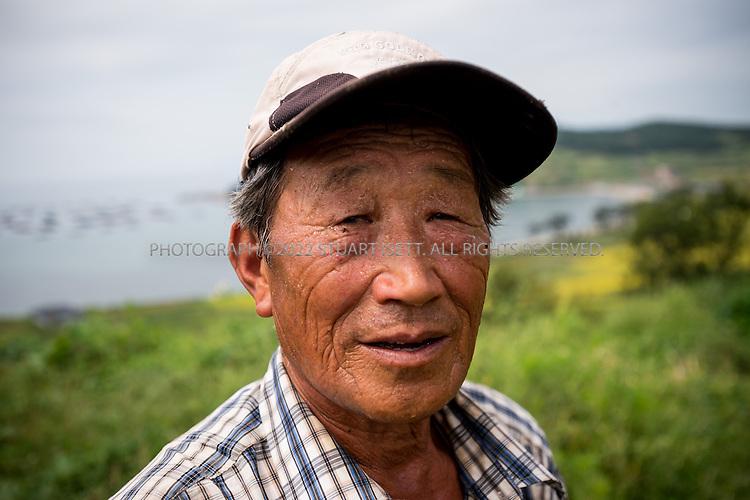 9/11/13 -- Cheongsando Island, Jeonnam Province (Jeollanam-do), South Korea<br /> <br /> A farmer, Mr. Choi Byung Chun, still using a cow in Goodlejang rice paddies on Cheongsando Island<br /> <br /> Photograph by Stuart Isett<br /> &copy;2013 Stuart Isett. All rights reserved.