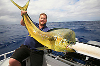 monster Mahi mahi, Coryphaena hippurus, dolphinfish, dorado, and angler, sportfishing