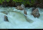 Lower Tenaya Creek at Dawn during Spring Flood, Yosemite National Park