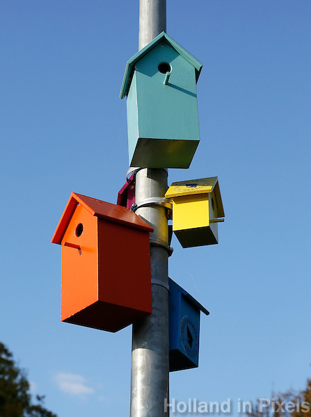 Sittard- Cultuurweek. Vogelhuisjes aan een lantaarnpaal