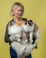 Julie Supple of Scottsdale, Ariz. holds her Ragdolls named Chuck Bass (left) and Mary Tyler Meow at the 44th East of Eden Cat Fancier's in Monterey, Calif. on Feb. 22, 2020.