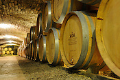 Oak barrels in a 13th century cave at the Chateau Chassenge Montrachet