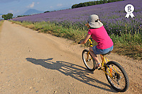 Girl biking by lavender fields at spring (Licence this image exclusively with Getty: http://www.gettyimages.com/detail/91537170 )