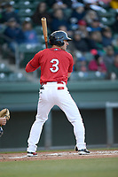 Left fielder Jordan Wren (3) of the Greenville Drive bats in a game against the Rome Braves on Saturday, April 20, 2019, at Fluor Field at the West End in Greenville, South Carolina. Rome won, 5-4. (Tom Priddy/Four Seam Images)