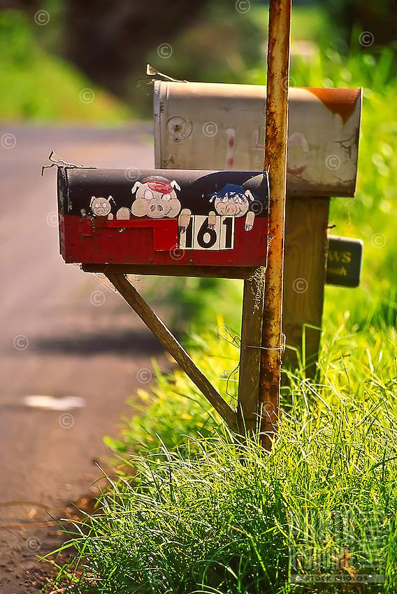 Three Little Pigs: A mailbox for a pig farm in Makawao, Maui.