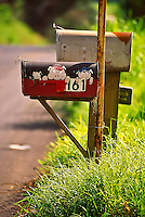 Three Little Pigs: A mailbox for a pig farm in Makawao, Maui.