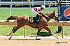 Captain Derek winning at Delaware Park on 5/23/15