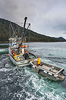 FV Morning Star making a set for Herring in Salisbury Sound, north of Sitka