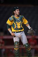 AZL Athletics catcher Cesarre Astorri (11) during an Arizona League game against the AZL Angels at Tempe Diablo Stadium on June 26, 2018 in Tempe, Arizona. The AZL Athletics defeated the AZL Angels 7-1. (Zachary Lucy/Four Seam Images)