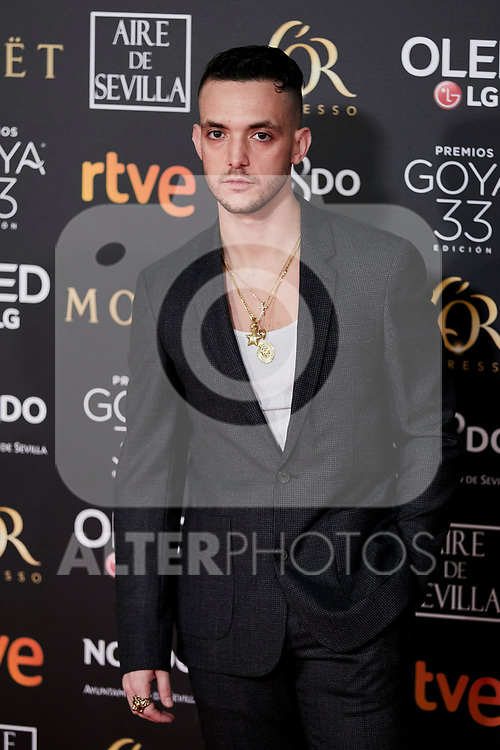 C. Tangana attends to 33rd Goya Awards at Fibes - Conference and Exhibition  in Seville, Spain. February 02, 2019. (ALTERPHOTOS/A. Perez Meca)