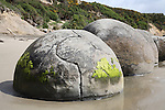 Moeraki Boulders are round septarian concretions created by cementation of Paleocene mudstone of the Moeraki formation, Koekohe Beach, New Zealand