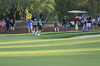 Xander Schauffele (USA) in the 18th bunker during the 1st round of the DP World Tour Championship, Jumeirah Golf Estates, Dubai, United Arab Emirates. 15/11/2018<br /> Picture: Golffile | Fran Caffrey<br /> <br /> <br /> All photo usage must carry mandatory copyright credit (&copy; Golffile | Fran Caffrey)