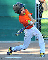 2015 PLEASANTON LITTLE LEAGUE ACTION