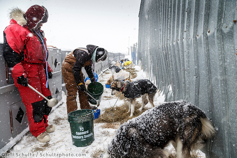 Volunteer dog handlers Jane Adkins and Alison Liska feed dropped dogs at the Unalakleet checkpoint on Monday March 16, 2015 during Iditarod 2015.  <br /> <br /> (C) Jeff Schultz/SchultzPhoto.com - ALL RIGHTS RESERVED<br />  DUPLICATION  PROHIBITED  WITHOUT  PERMISSION