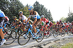 The peloton including Makael Cherel (FRA) AG2R La Mondiale climb Colle Brianza during the 112th edition of Il Lombardia 2018, the final monument of the season running 241km from Bergamo to Como, Lombardy, Italy. 13th October 2018.<br /> Picture: Eoin Clarke | Cyclefile<br /> <br /> <br /> All photos usage must carry mandatory copyright credit (© Cyclefile | Eoin Clarke)
