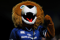 Leo the Leinster mascot during the Amlin Challenge Cup Final between Leinster Rugby and Stade Francais at the RDS Arena, Dublin on Friday 17th May 2013 (Photo by Rob Munro).