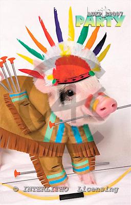 Samantha, ANIMALS,  photos,+pigs,++++,AUKPSP007,#A# Humor, lustig, divertido