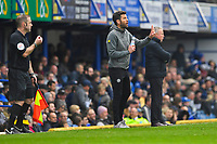 Rochdale Manager Brian Barry-Murphy  issues instructions during Portsmouth vs Rochdale, Sky Bet EFL League 1 Football at Fratton Park on 13th April 2019