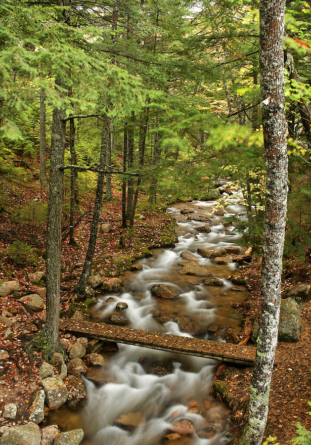 Foot bridge over Jordan Stream, Mount Desert Island, Hancock County, Acadia National Park, Maine, USA