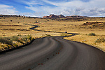 A winding road through Canyonlands, Canyonlands National Park, Utah, USA