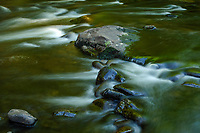 West Branch, Sacandaga River, Silver Lake Wilderness Area, Adirondack Forest Preserve, New York