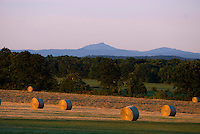 Hay bales and Camels Hump, Whiting, Vermont.