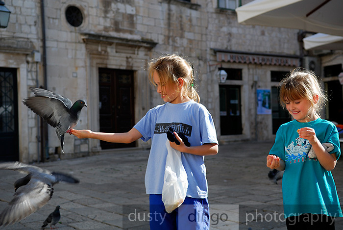 Two children (9 years old, 5 years old) feeding pigeons on Gunduliceva Poljana (Square), Dubrovnik old town, Croatia