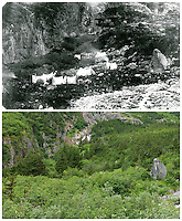 KLGO Photo Station CH-07: Long Hill. August 20, 2013, View from the Chilkoot Trail across the valley of Stone House, on Long Hill, Klondike Gold Rush National Historical Park, Alaska, United States. Upper photo was taken September 4, 1897 by Henry M. Sarvant (University of Washington Libraries, Special Collections, UW22056). Lower photo was taken August 20, 2013 by Ronald D. Karpilo Jr. (Karpilo #20130820-00124).
