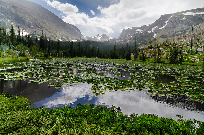 Chickadee Pond, Wild Basin, Rocky Mountain National Park, Colorado, USA
