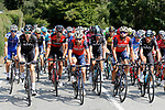 The peloton during Stage 19 of the 2017 La Vuelta, running 149.7km from Caso. Parque Natural de Redes to Gij&oacute;n, Spain. 8th September 2017.<br /> Picture: Unipublic/&copy;photogomezsport | Cyclefile<br /> <br /> <br /> All photos usage must carry mandatory copyright credit (&copy; Cyclefile | Unipublic/&copy;photogomezsport)